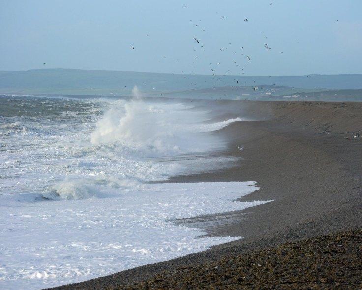 Chesil Cove, 27 Dec 13