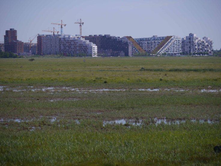 Coepnhagen development, Kalvebod