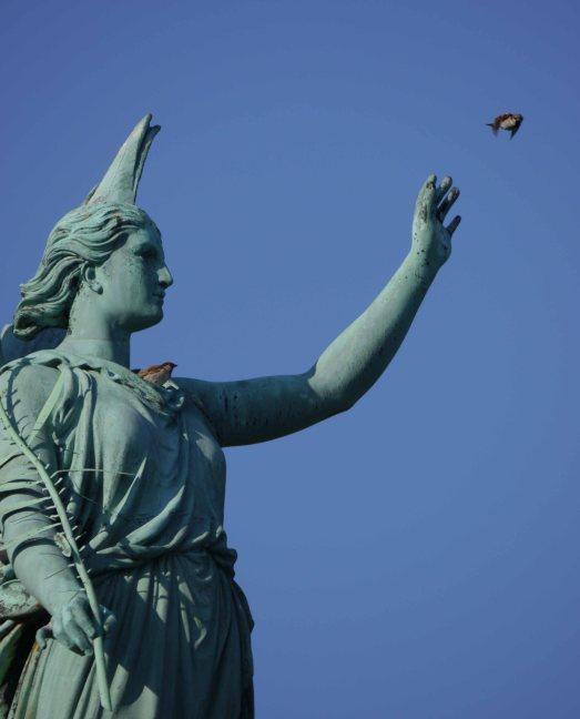 Copenhagen statue, sparrow release, MJMcGill